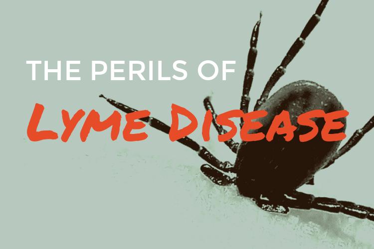 The Perils of LymeDisease